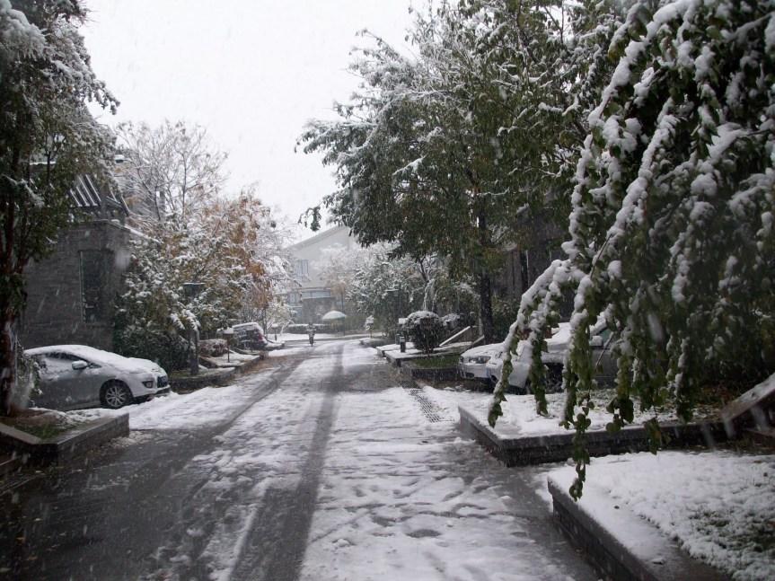 Snow in Beijing