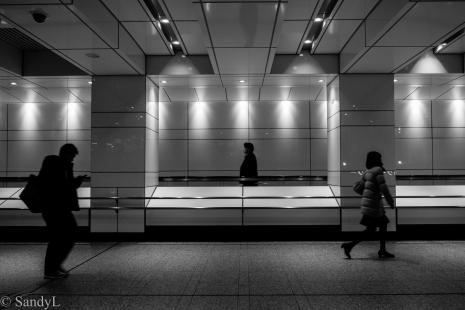 Shinjuku-7958