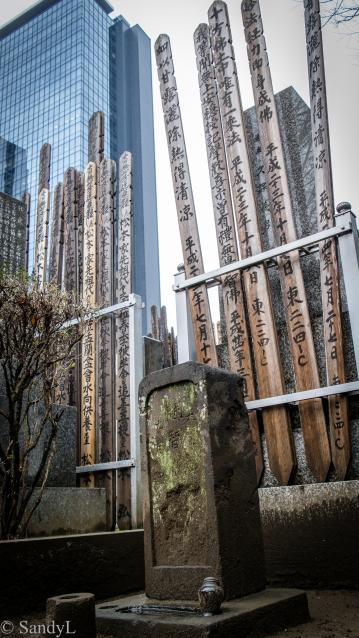 Shinjuku Cemetary-7949