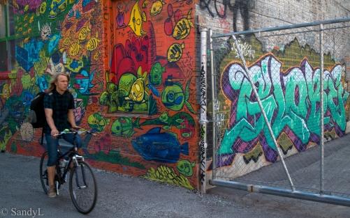 Grafitti-9627