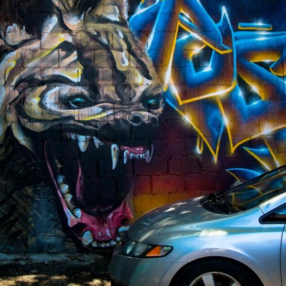 Grafitti-9654