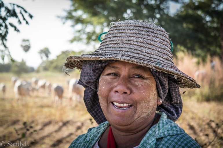 Smiling lady in cow field in Bagan, Myanmar