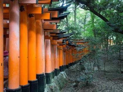 A corridor of a thousand gates