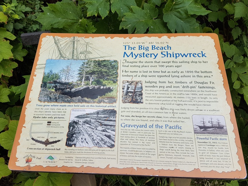 ShipWreck3