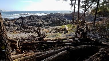 Rocky beaches