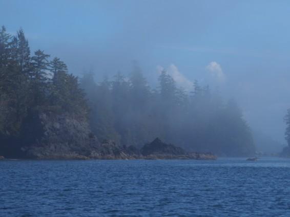 Fog in Barclay Sound