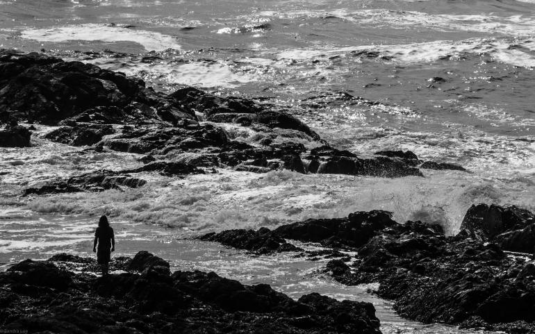 Big Beach Silouette-5180072