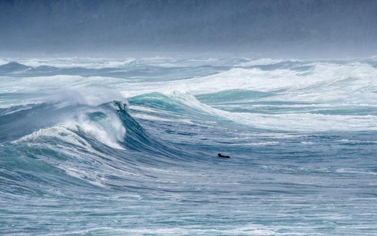 Surf High Waves-5180030.jpg