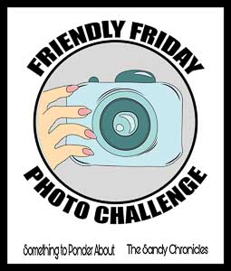 Logo for Friendly Friday Photo Challenge hosted by TheSandyChronicles and SomethingToPonderAbout